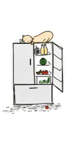 tomt kjøleskap Challenge